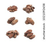 pile of cocoa beans isolated... | Shutterstock . vector #1021092658