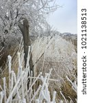 frosty fence line  | Shutterstock . vector #1021138513