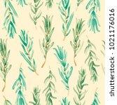watercolor rosemary pattern... | Shutterstock . vector #1021176016