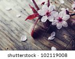 Spring blossom on rustic wooden plank - stock photo