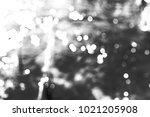 blur bokeh background of water... | Shutterstock . vector #1021205908