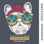 surf illustration   t shirt... | Shutterstock .eps vector #1021213363