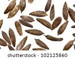 macro detail of tiny lettuce... | Shutterstock . vector #102125860