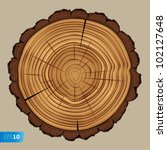 Cross Section Of Tree Stump...