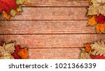 autumn background with leaf on... | Shutterstock . vector #1021366339