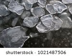 round pieces of ice in the... | Shutterstock . vector #1021487506