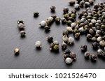 job's tears   coix lachryma... | Shutterstock . vector #1021526470