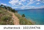 secret path next to paradise... | Shutterstock . vector #1021544746