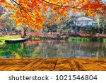 the beautiful maple season at... | Shutterstock . vector #1021546804