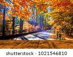 the beautiful maple season at... | Shutterstock . vector #1021546810