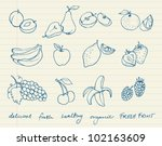 set of fruit doodle drawings... | Shutterstock .eps vector #102163609