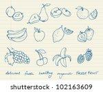 set of fruit doodle drawings... | Shutterstock .eps vector #102163609