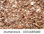 close up of dried granola with... | Shutterstock . vector #1021685680