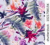 seamless floral pattern with... | Shutterstock . vector #1021708156