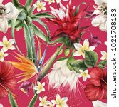 seamless floral pattern with... | Shutterstock . vector #1021708183