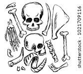 set of skulls  bones and horns. ...   Shutterstock .eps vector #1021709116