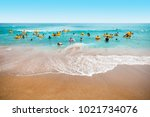 jeju island  south korea  ...   Shutterstock . vector #1021734076