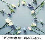 Prairie Gentian Flowers And...