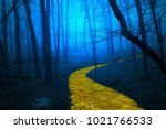 The Yellow Brick Road Leading...