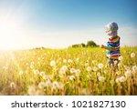happy boy standing in grass on... | Shutterstock . vector #1021827130