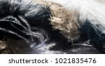 Feathers Abstract Wispy