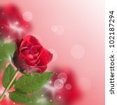 red roses with bokeh and copy space - stock photo