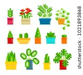 set of houseplants vector icons ... | Shutterstock .eps vector #1021893868