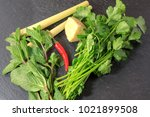 fresh herbs including mint ... | Shutterstock . vector #1021899508