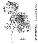 nifty gentle hand drawn... | Shutterstock .eps vector #1021911730