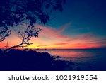 golden tropical sunset with...   Shutterstock . vector #1021919554