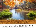 the beautiful maple season at... | Shutterstock . vector #1021961518