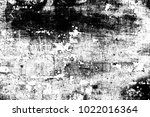abstract background. monochrome ... | Shutterstock . vector #1022016364