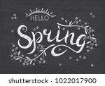 hello spring. hand drawn...   Shutterstock .eps vector #1022017900