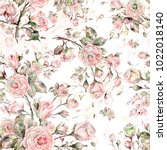 watercolor seamless rose... | Shutterstock . vector #1022018140