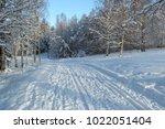 ski trails in swedish forest | Shutterstock . vector #1022051404
