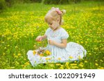 A little blonde caucasian child girl in light blue dress and roses in hair pick flowers in a meadow full of plants red roses yellow chamomiles and yellow dandelions put it her basket