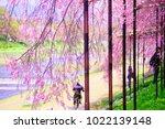 kyoto  japan   13 april 2017 ... | Shutterstock . vector #1022139148