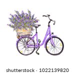 Violet Bicycle With Lavender...