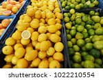fresh citrus fruits at farm... | Shutterstock . vector #1022210554