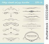 vintage element and page... | Shutterstock .eps vector #102221680