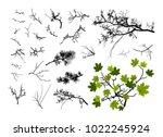 set of tree branches   vector... | Shutterstock .eps vector #1022245924