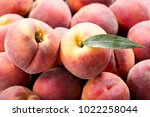 close up of fresh peaches as... | Shutterstock . vector #1022258044