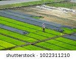 modern agriculture innovation... | Shutterstock . vector #1022311210