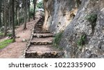 Natural Stone Stairs Hiking...