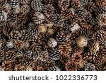 a heap of cones without seeds ... | Shutterstock . vector #1022336773