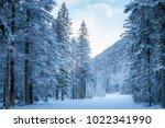 tre cime di lavaredo  dolomites ... | Shutterstock . vector #1022341990