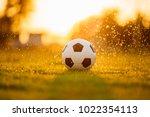a ball on the green grass field ... | Shutterstock . vector #1022354113