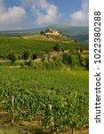 vineyard estate in tuscany ... | Shutterstock . vector #1022380288