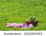 picnic basket and blanket | Shutterstock . vector #1022401063