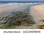 coast of the mediterranean sea... | Shutterstock . vector #1022409844